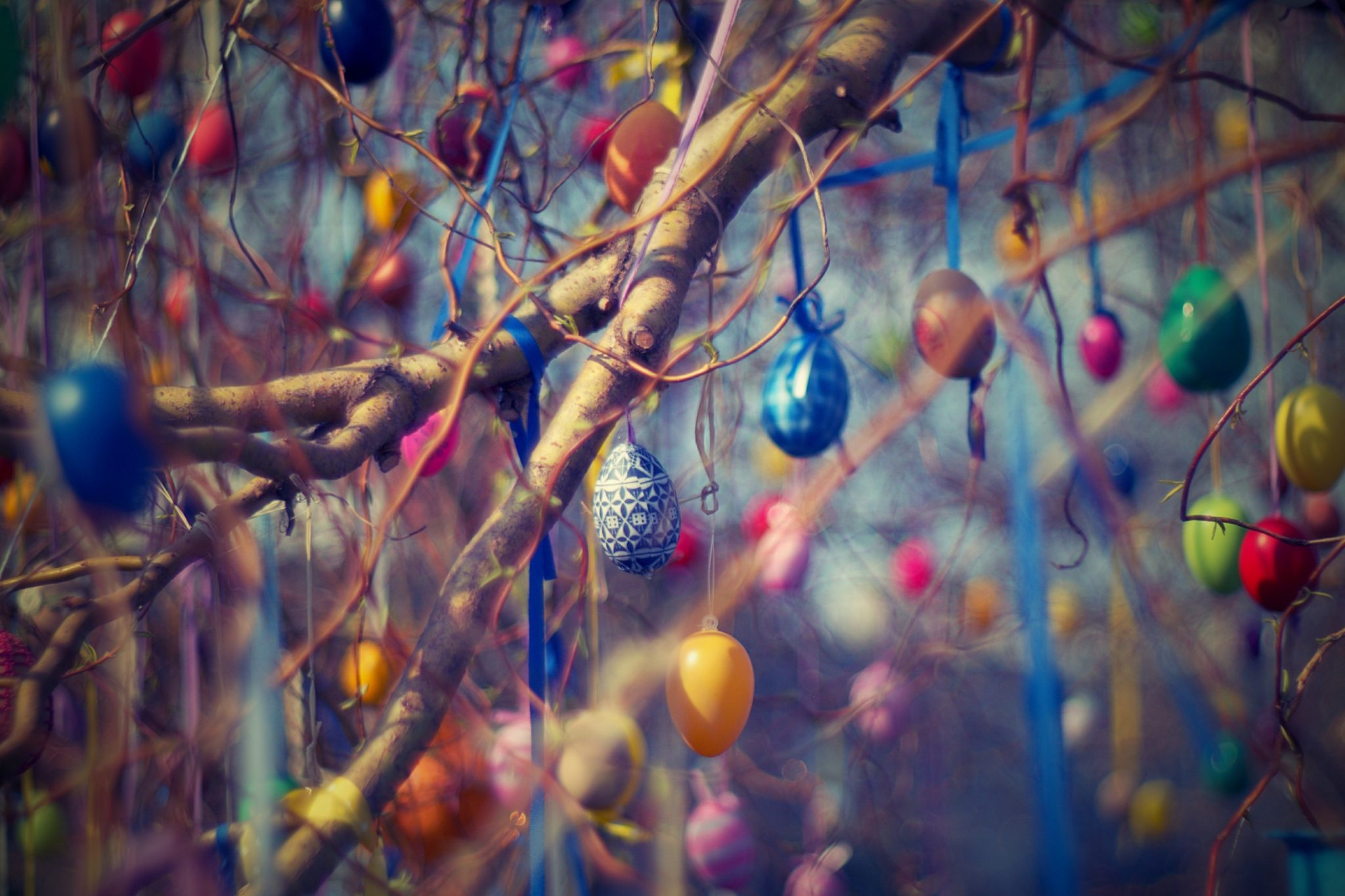 Easter eggs hanging from trees