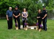 World Elder Abuse Awareness Day Tree Planting Ceremony